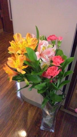 明るい花ですね♪